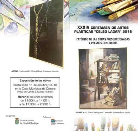 Exposición obras del certamen de artes plásticas Celso Lagar