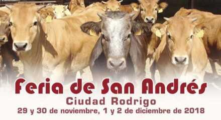 Feria de San Andrés 2018