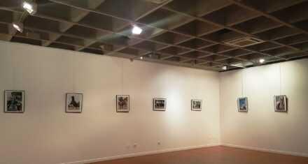 XVII Concurso Fotográfico. Feria del Caballo 2019