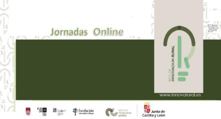 Jornadas On-line